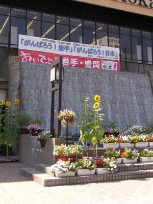 20110908_143