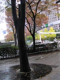 2011123_007