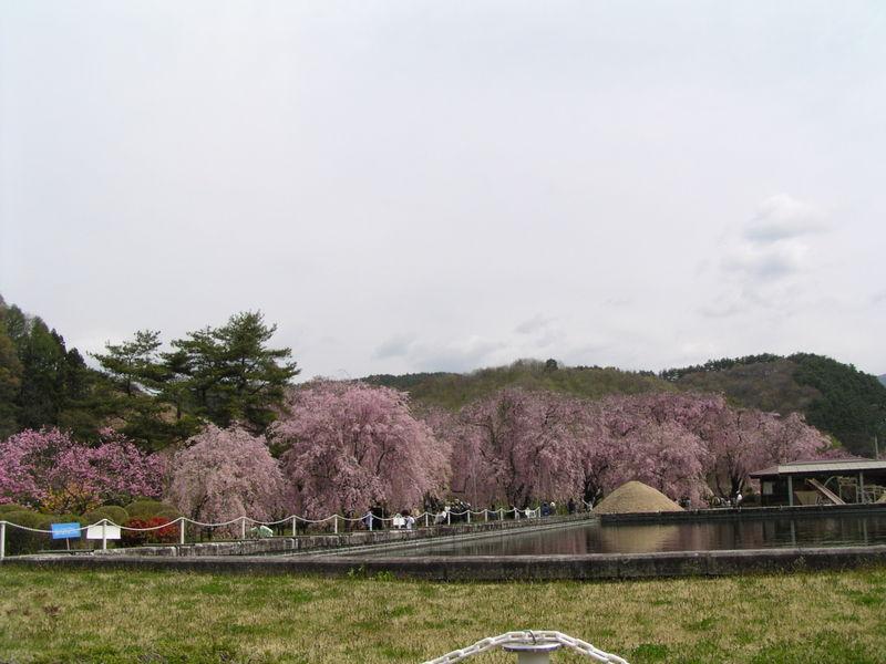 200954_023