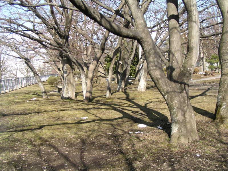 201038_124