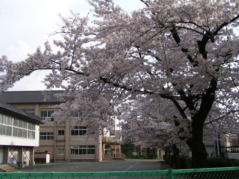 201054_006