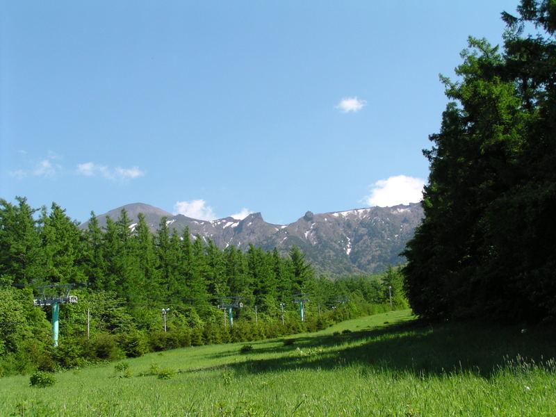 2010531_122