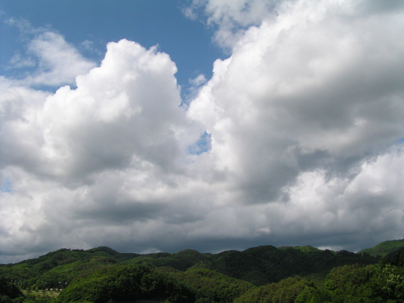 2011615_004