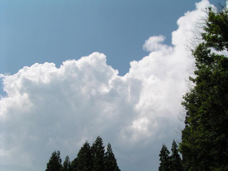 2011712_061